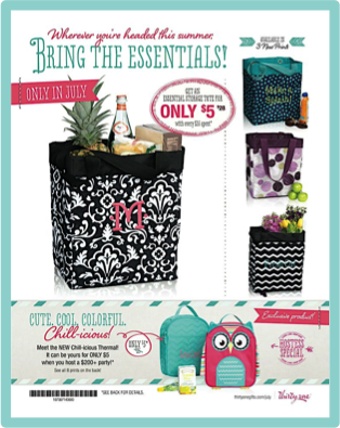 July Customer Special – Essentials Storage Tote – Last Chance