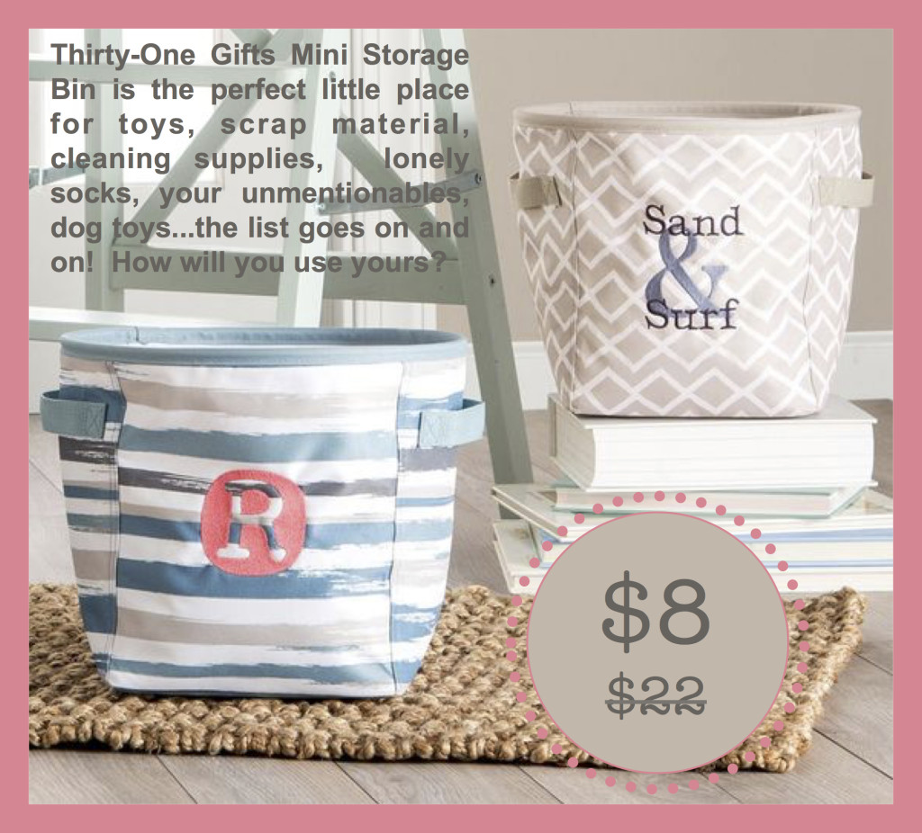 Thirty-One Gifts Mini Storage Bin